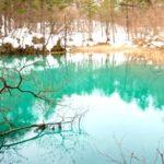 冬の五色沼自然探勝路を歩いてきた