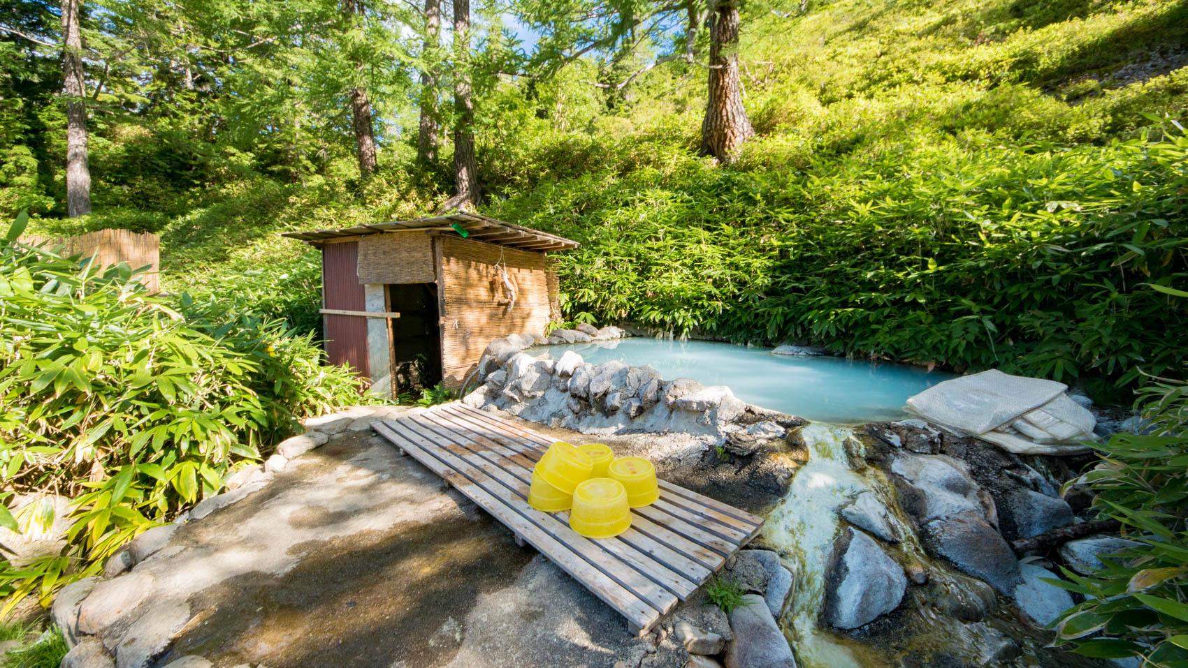 高天原温泉(からまつの湯)